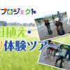 親子田植え・稲刈り体験ツアー【募集開始!】