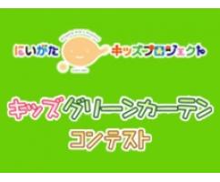 グリーンカーテンコンテスト 入賞作品発表①(個人部門)